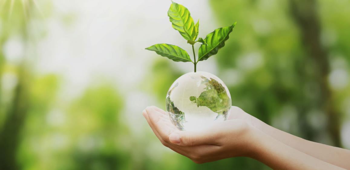 Dvije nove uredbe o zaštiti okoliša u FBiH u primjeni od naredne godine