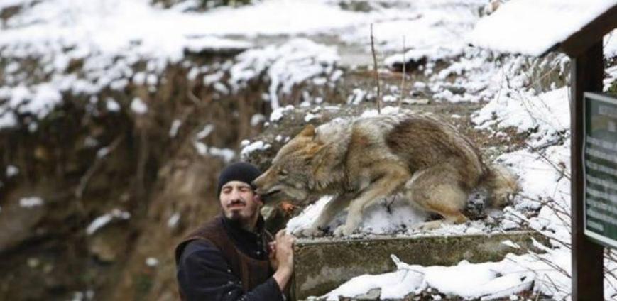 Neobična priča o monahu i vučici