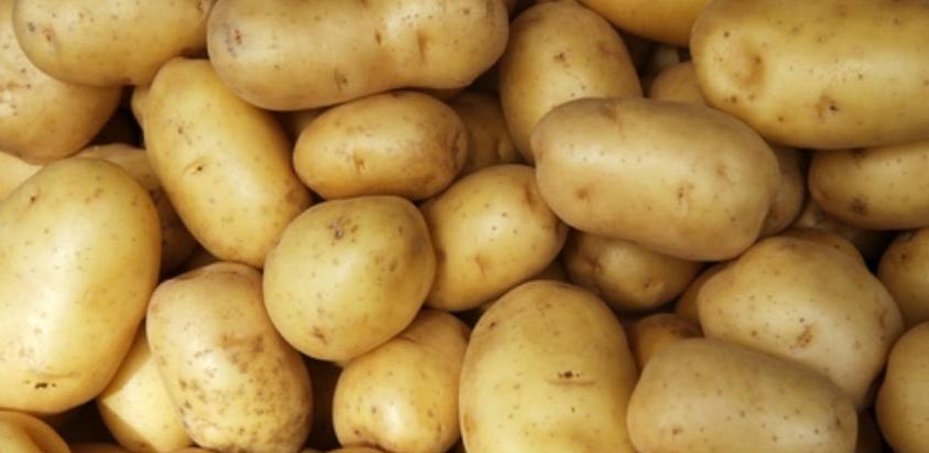Nevesinjski krompir postaje brend