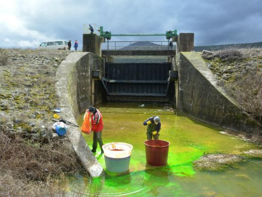 Elektroprivreda HZHB se pridružila naporima za obnovu močvara Hutova blata