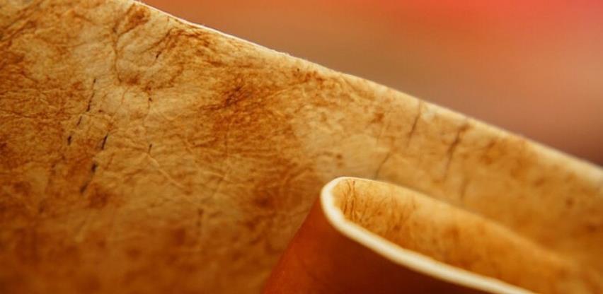 Materijal budućnosti, koža od gljiva
