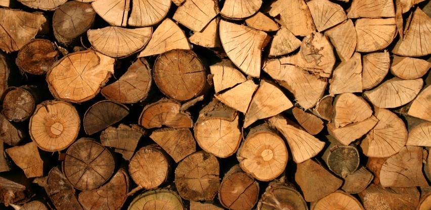 U FBiH nastavljen trend smanjenja proizvodnje i prodaje šumskih sortimenata