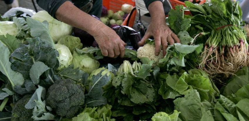 Udruženja organskih proizvođača aplicirali za projekat težak više od milion eura