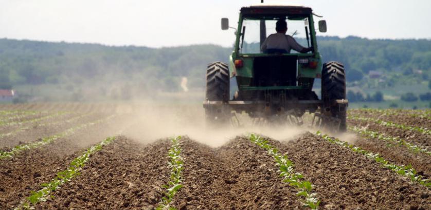 Tri miliona KM za podršku poljoprivrednoj proizvodnji u ZDK