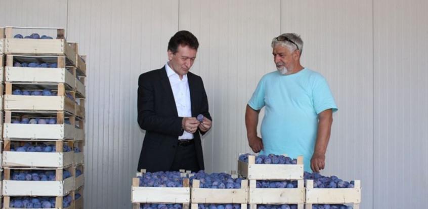 Izvoznici šljive u problemu zbog inspekcije na hrvatskoj granici