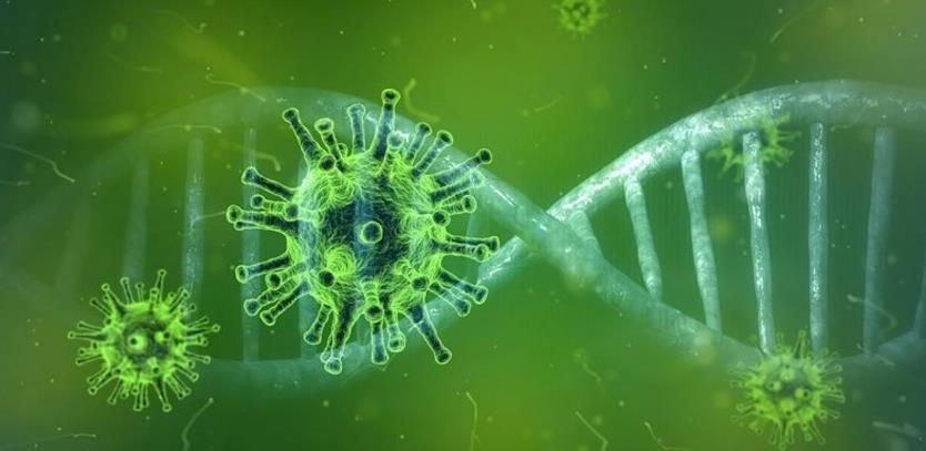 Nauka koja stoji iza testa za coronavirus