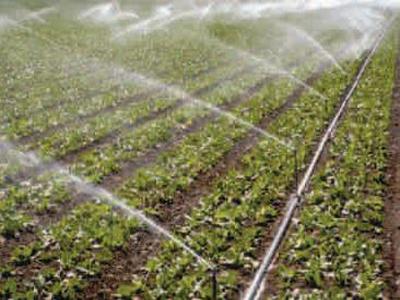 Izgradnja irigacionih sistema: U Gradišci navodnjavanje oko 15.000 hektara