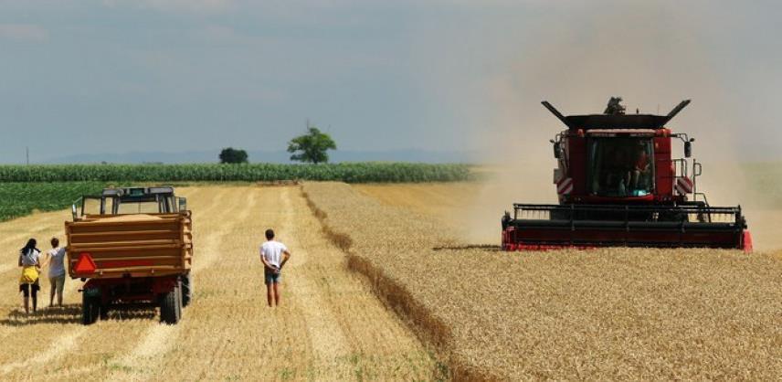 Za poljoprivredni sektor u BiH objavljen javni poziv vrijedan 1,8 miliona KM