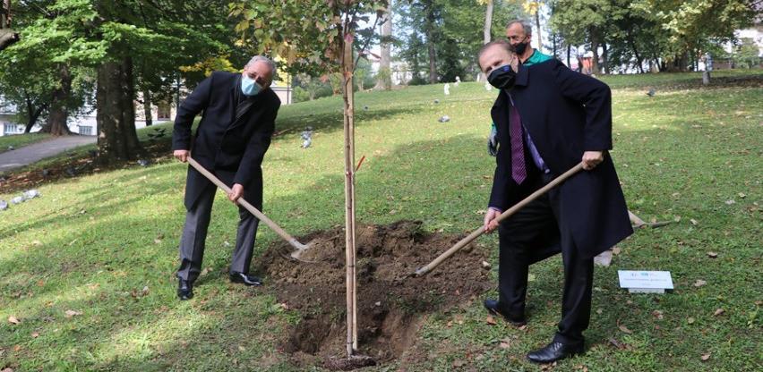 U povodu 20 godina BBI banka će zasaditi preko hiljadu stabala širom BiH