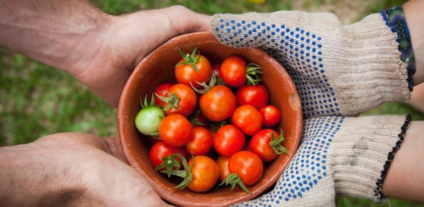 Vlada osigurala 8.199.933 KM pomoći za poljoprivredno-prehrambeni sektor