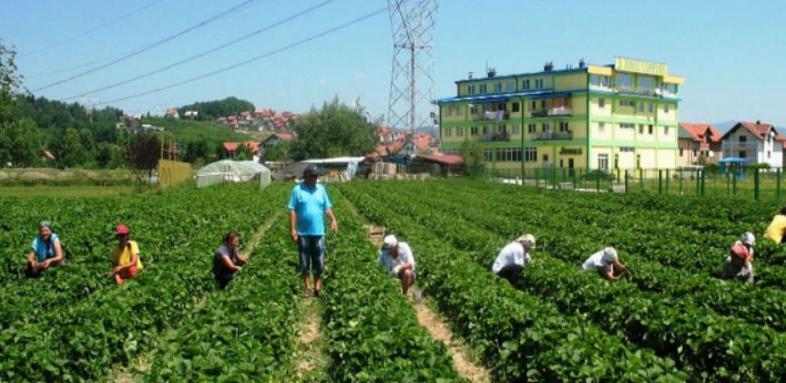 Oko milion KM za razvoj poljoprivrede u Banjaluci
