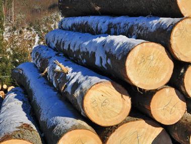 Drvoprerađivačima iz BiH upućen poziv za poslovnu suradnju
