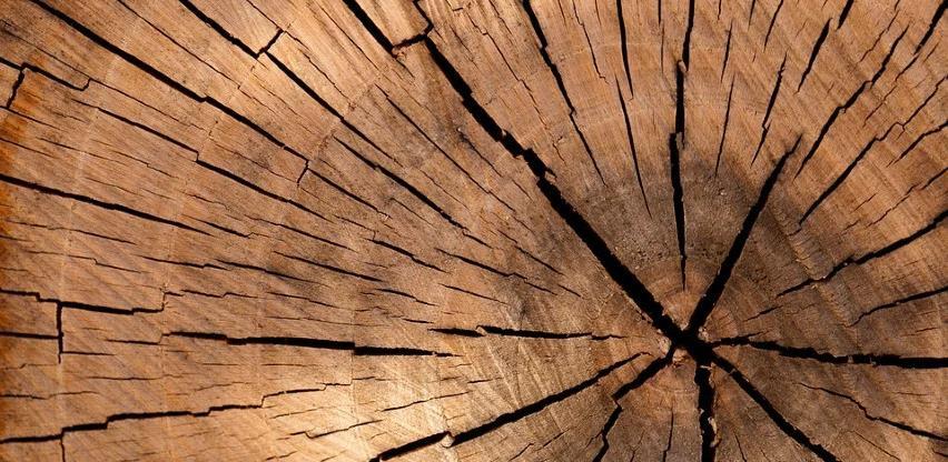 Izvoz drvne industrije i namještaja iz BiH pao za oko 13 posto