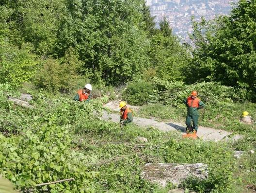 U Sarajevu na zaštićenim prirodnim područjima 2.000 hektara šume