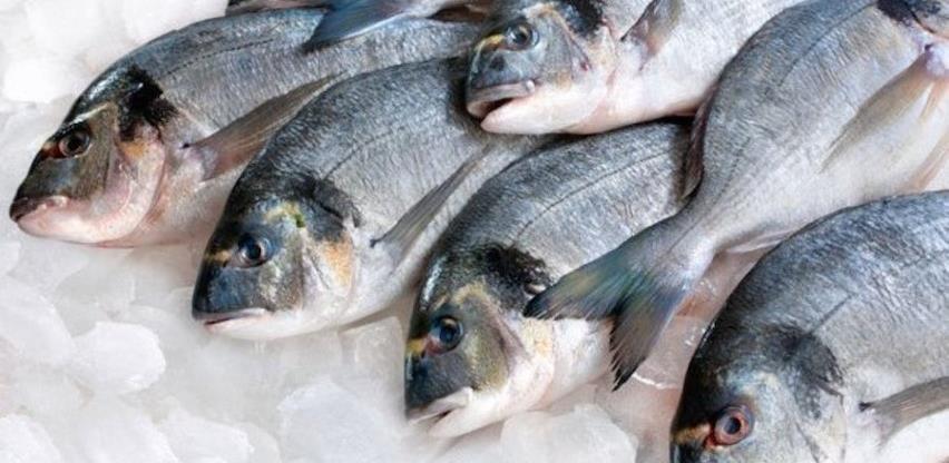 Nelegalan uvoz ribe sprečava legalnu proizvodnju u RS-u