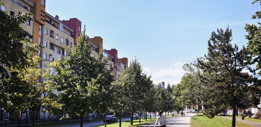 Na jesen sadnja tri nove aleje u Banjaluci