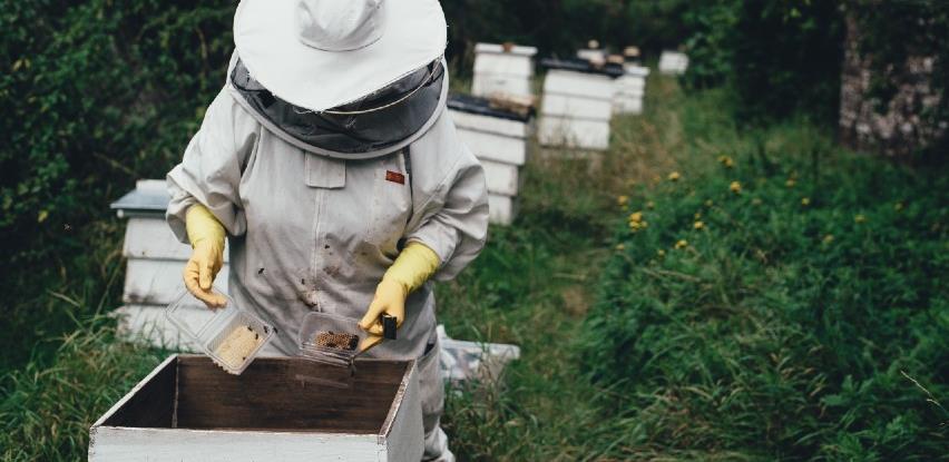Završena izuzetno loša pčelarska sezona