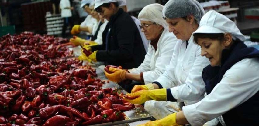Kako rade firme koje nisu obustavljale proizvodnju u vrijeme pandemije?