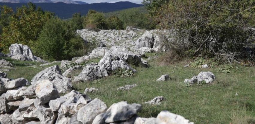'Kamene livade' ograđene kamenom ogradom uobičajena praksa u Hercegovini