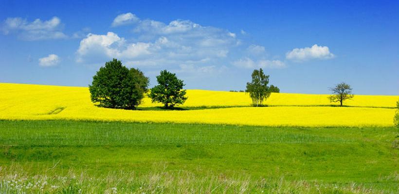 BiH i Crna Gora unapređuju saradnju kroz poljoprivredu i ruralni razvoj