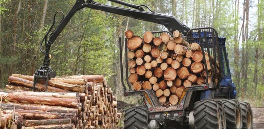 Opala proizvodnja šumskih sortimenata