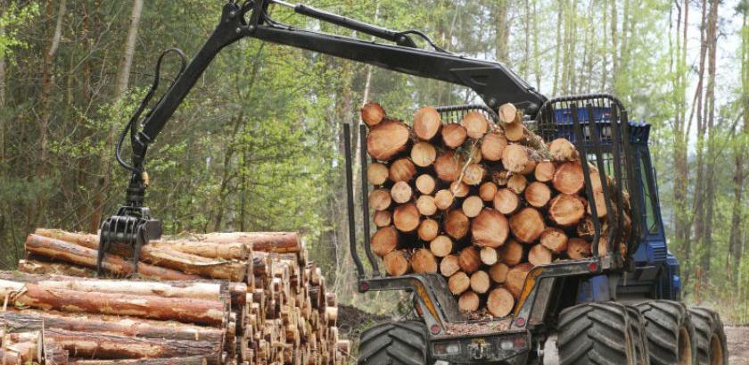 Manja proizvodnja i prodaja šumskih sortimenata u RS-u