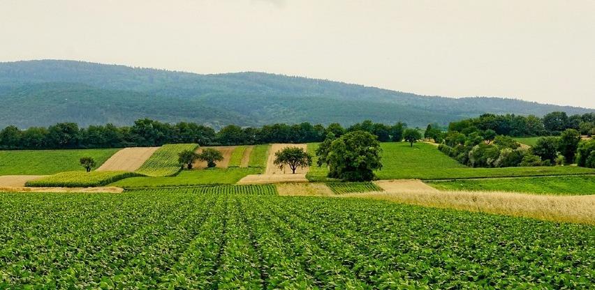 U projekt razvoja poljoprivrede i ruralnih preduzeća uključeno 90 bh. općina