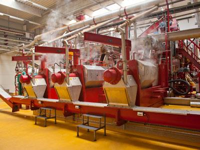 Na spaljivanje u Inđiju otpremljeno 17 tona animalnog otpada