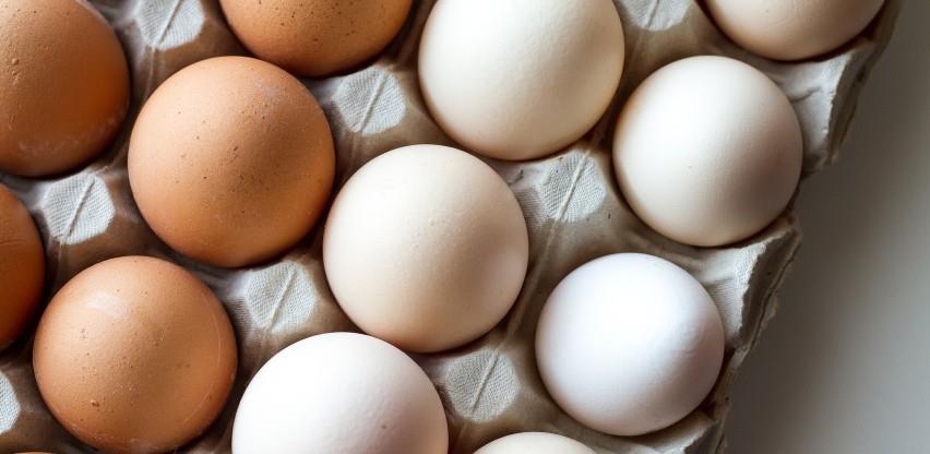 Boksit Milići proizvodit će 8 miliona jaja mjesečno