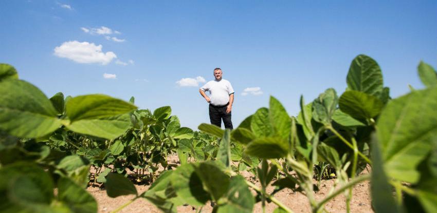Od proizvodnje genetski nemodificirane soje zaradili skoro 3 miliona KM