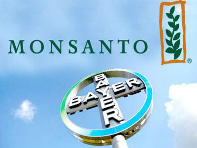 GMO (ne) ulazi na velika vrata u Evropu?