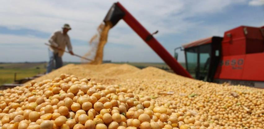 U RS će biti dozvoljeno stavljanje u promet GMO soje za ishranu životinja