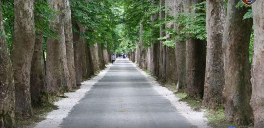 Završena obnova Velike aleje na Ilidži vrijedna 150.000 KM
