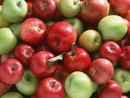 Jaffa-Komerc sa svoje plantaže nudi samo najbolje i najzdravije jabuke