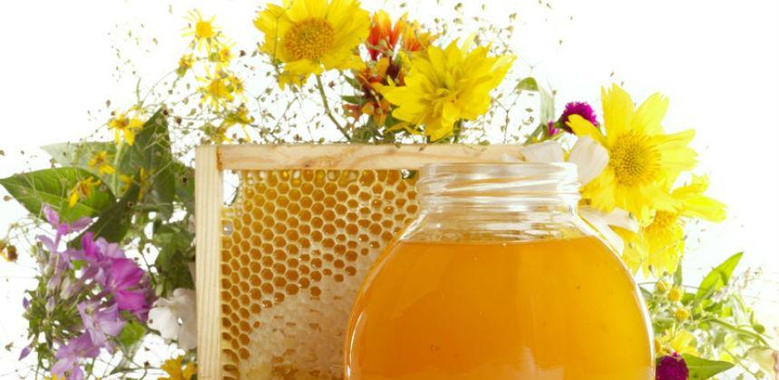Iz BiH u 41 zemlju izvezeno ljekovito bilje, šumski plodovi i med