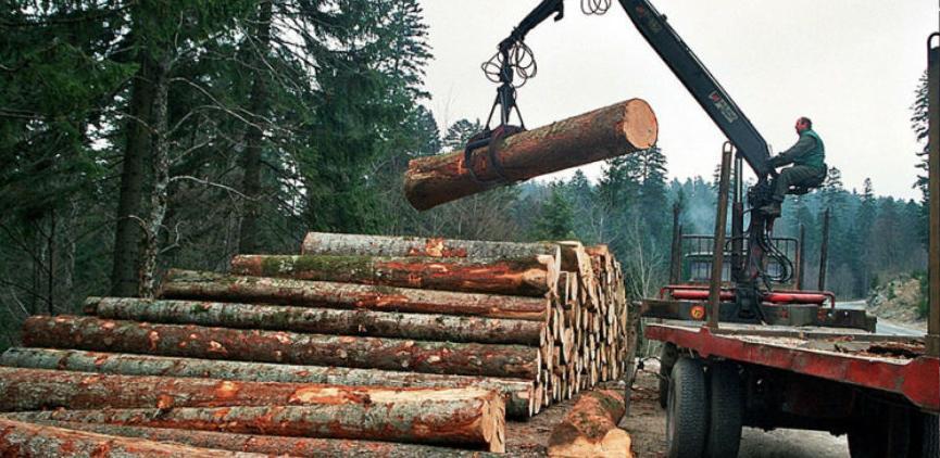Najvećim drvoprerađivačima dugoročni ugovori i zagarantovane količine sirovina