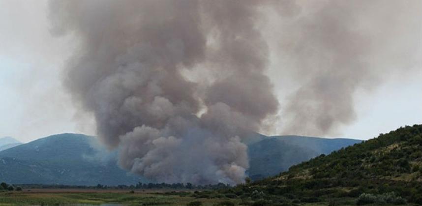 Močvare Hutovo blato, Bardača i Livanjsko polje ubrzano propadaju