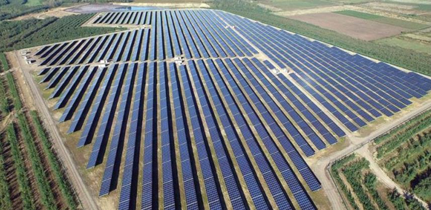 Vuk Hamović planira u Hercegovini da gradi solarnu elektranu na 133 hektara