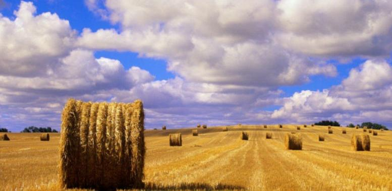 Izdvajanja za poljoprivredu TK povećana za oko 230.000 KM