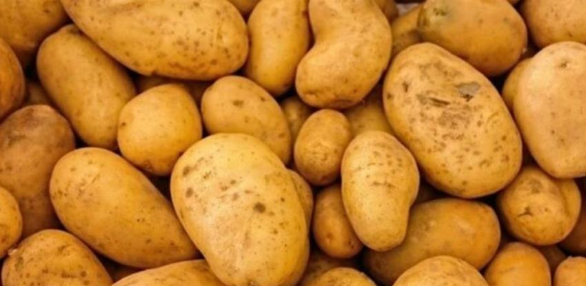 Zabranjen uvoz 22 tone krompira iz Italije