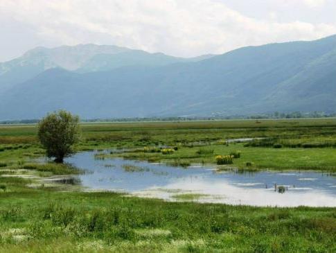 Hutovo blato zaštititi kao prirodnu vrijednost i značajan turistički resurs