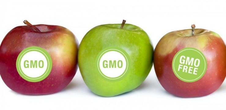 BiH prva označava GMO-free hranu