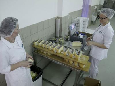 EU pliva u mlijeku, tanak izvoz iz BiH