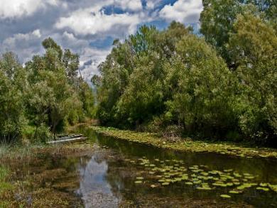 Teletović: Park prirode Hutovo blato učiniti funkcionalnijim