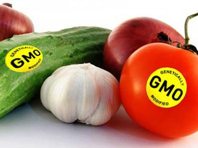 Bulić: Prehrambeni proizvodi moraju imati oznaku o sadržaju GMO