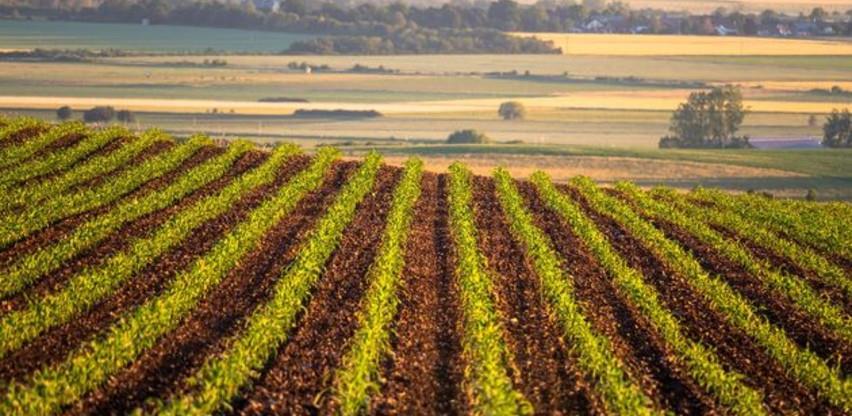 Općina Bosanska Krupa dodijelila 50 hiljada KM za sjetvu kukuruza