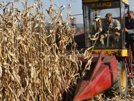 Nerealan program poticaja Ministarstva poljoprivrede FBiH