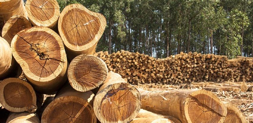 Vlada TK utvrdila prijedlog izmjena i dopuna Zakona o šumama