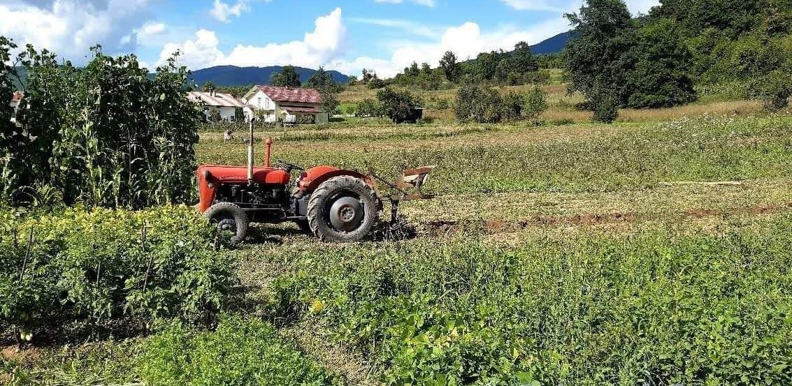 Objavljen Program poticaja za poljoprivredu za 2021. godinu