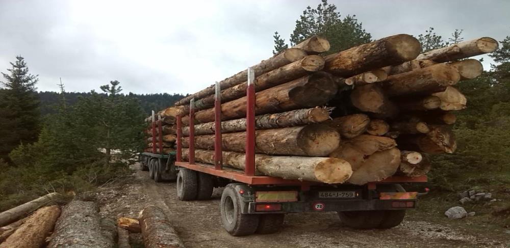 PKFBiH - Poreskim olakšicama stimulirati izvoznike u drvopreradi